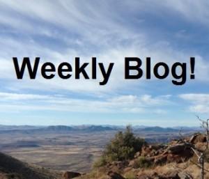 ProjectBlog